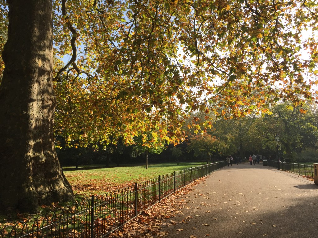 Perfect autumn day in London