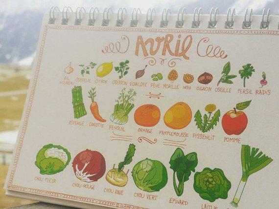 calendrier-perpetuel-des-fruits-legumes-de-saison